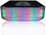 Portable Bluetooth Speaker with LED Lights and FM Radio JHW-V316