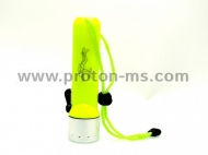 Professional LED Flashlight for Diving