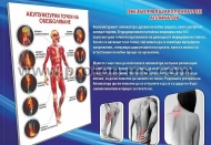 28cm x 20cm Painless Acupuncture Applicator
